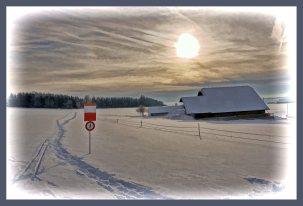 SULZ/LU 19. JANUAR 2015 - PFERDEKUTSCHE IM VERSCHNEITEN SULZER WALD: Pferdeschlitten im tief verschneiten Sulzer Wald auf dem Lindenberg.