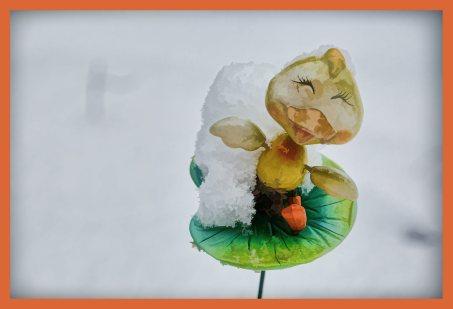 SULZ/LU 17. JANUAR 2015 - UNSER GARTEN IM SCHNEE: Features aus unserem Garten im ersten Schnee. Der Winter verzaubert die Natur.