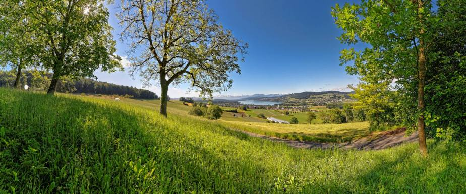 600m über Meer und hoch über dem Alltag - da liegt der Eichberg. Hoch über Seengen und dem Wasserschloss Hallwil lockt eine fantastische Aussicht über das Seetal (Hallwilersee) bis hin zu den Alpen.