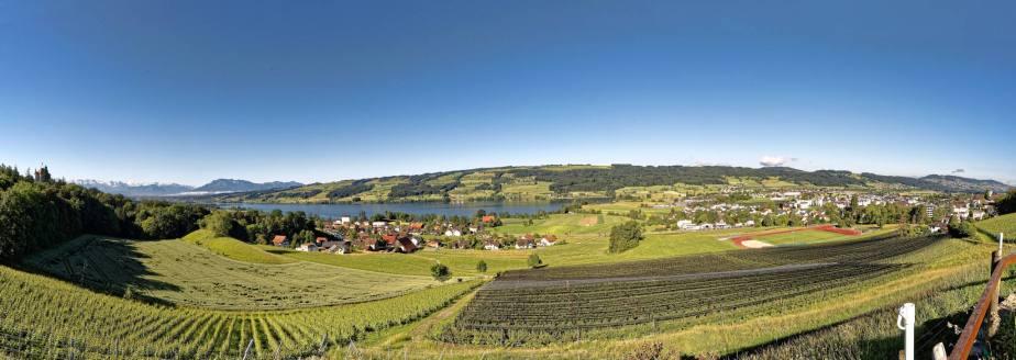Panorama auf dem Weingut Kaiserspan von Edith Maechler-Britschgi und Andreas Bachmann in Gelfingen bei Hitzkirch. Am linken Bildrand das Schloss Heidegg, in der Mitte Gelfingen und der Baldeggersee und rechts Hitzkirch, im Hintergrund der Hallwilersee.