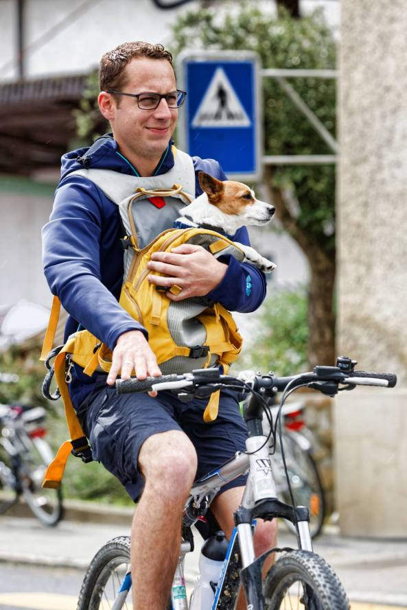 Doggie-Bike (Photo by: www.studhalter.org)