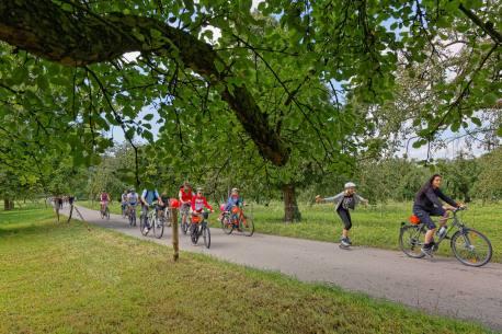 Im Land der Obstbäume bei Altwis (Photo by: www.studhalter.org)