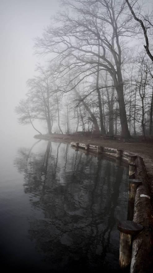GELFINGEN/LU 19. FEBRUAR 2017 - SERIE SEHTAL.COM BLOG: Impressionen winterlicher Nebel und Rauhreif im Seebad Gelfingen (Baldeggersee). Fotos zu Projekt Sehtal (Luzerner Seetal). ths/Photo by: THOMI STUDHALTER, PHOTOS&MORE, www.studhalter.org