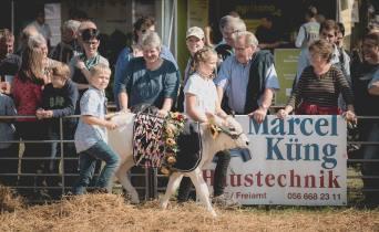 Impressionen vom Kälberwettbewerb HORBA 2017 Aargauer kantonale Braunviehausstellung auf dem Horben bei Beinwil/Freiamt.