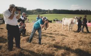 Gina - Miss Protein im Fokus der Fotografen: Impressionen HORBA 2017 Aargauer kantonale Braunviehausstellung auf dem Horben bei Beinwil/Freiamt.