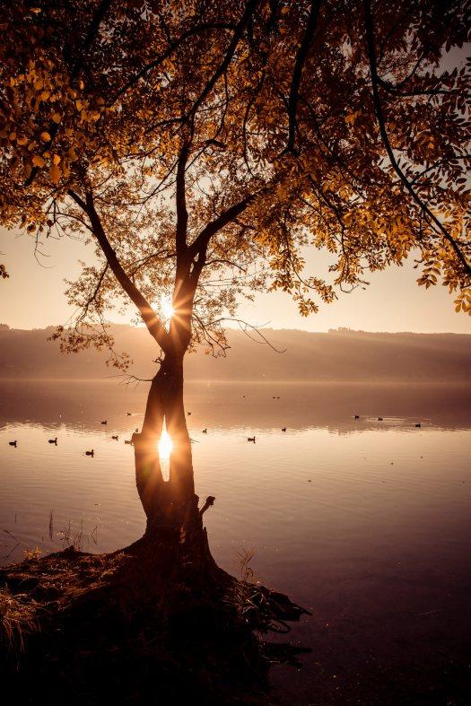 BALDEGG/LU 13. OKTOBER 2017 - SERIE SEHTAL.COM BLOG: Impressionen Herbst am Baldeggersee. Fotos zu Projekt Sehtal (Luzerner Seetal). ths/Photo by: THOMI STUDHALTER, PHOTOS&MORE, www.studhalter.org