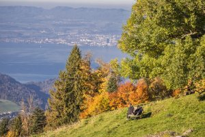 SEEBODENALP-KUESSNACHT/SZ 14. OKTOBER 2017 - SERIE SEHTAL.COM BLOG: Impressionen Herbst auf der Seeobodenalp hoch ueber Kuessnacht. Ausflug zur Alpbeiz Ruodishuette. Blick auf den Pilatus und hinunter nach Kessnacht. Fotos zu Projekt Sehtal (Luzerner Seetal). ths/Photo by: THOMI STUDHALTER, PHOTOS&MORE, www.studhalter.org