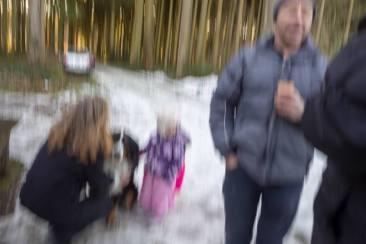 Neujahrskater oder ein verwackeltes, erstes Foto 2018...