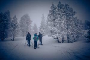 Schneewandern im tiefverschneiten und saukalten (-9Grad) Schwendi-Kaltbad Glaubenberg/OW.
