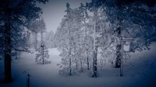 Winterwanderweg im tiefverschneiten und saukalten (-9Grad) Schwendi-Kaltbad Glaubenberg/OW.