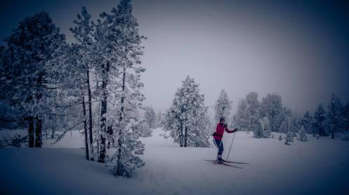 Langlauf im tiefverschneiten und kalten (-9Grad) Schwendi-Kaltbad Glaubenberg/OW.