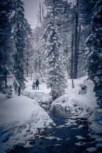 Winterliche Idylle auf dem Moorbärpfad im tiefverschneiten Kaltbad.