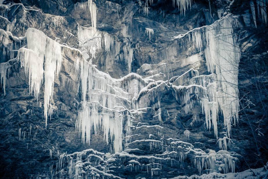 Eiskalte Schönheiten